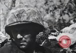 Image of 81st Army Division firing on sniper Peleliu Palau Islands, 1944, second 52 stock footage video 65675022967