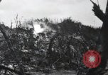 Image of 81st Army Division firing on sniper Peleliu Palau Islands, 1944, second 54 stock footage video 65675022967