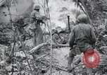 Image of 81st Army Division firing on sniper Peleliu Palau Islands, 1944, second 58 stock footage video 65675022967