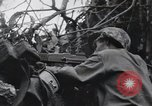 Image of 81st Army Division firing on sniper Peleliu Palau Islands, 1944, second 60 stock footage video 65675022967
