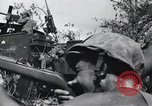Image of 81st Army Division firing on sniper Peleliu Palau Islands, 1944, second 61 stock footage video 65675022967
