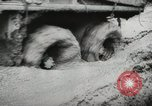 Image of 36th Infantry Troops Italy, 1944, second 19 stock footage video 65675022970