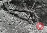 Image of 36th Infantry Troops Italy, 1944, second 36 stock footage video 65675022972