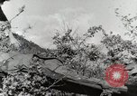 Image of 36th Infantry Troops Italy, 1944, second 41 stock footage video 65675022972