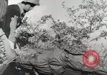 Image of 36th Infantry Troops Italy, 1944, second 43 stock footage video 65675022972