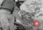 Image of 36th Infantry Troops Italy, 1944, second 44 stock footage video 65675022972
