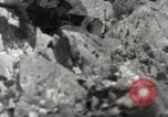 Image of 142nd Infantry Regiment Italy, 1944, second 4 stock footage video 65675022974