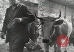 Image of 143nd Infantry Regiment Italy, 1944, second 43 stock footage video 65675022975