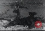 Image of AEF punitive expedition Mexico, 1916, second 24 stock footage video 65675023058