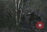 Image of Hunt for Pancho Villa Mexico, 1916, second 3 stock footage video 65675023067