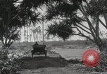 Image of Mountainous landscape Hawaii USA, 1916, second 54 stock footage video 65675023078