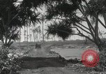 Image of Mountainous landscape Hawaii USA, 1916, second 58 stock footage video 65675023078
