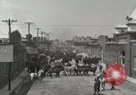 Image of Mule market Memphis Tennessee USA, 1917, second 2 stock footage video 65675023080