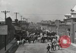 Image of Mule market Memphis Tennessee USA, 1917, second 3 stock footage video 65675023080