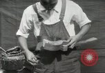 Image of Construction of Ukulele Hawaii USA, 1917, second 35 stock footage video 65675023085