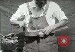 Image of Construction of Ukulele Hawaii USA, 1917, second 40 stock footage video 65675023085