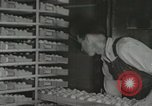Image of Electric improvements for farms Tennessee United States USA, 1935, second 29 stock footage video 65675023095