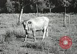 Image of Industry in Appalachia Marion Virginia USA, 1934, second 47 stock footage video 65675023100