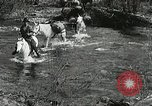 Image of Government workers plant trees Yacolt Washington USA, 1934, second 5 stock footage video 65675023133