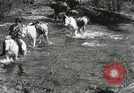 Image of Government workers plant trees Yacolt Washington USA, 1934, second 7 stock footage video 65675023133