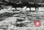 Image of Government workers plant trees Yacolt Washington USA, 1934, second 13 stock footage video 65675023133
