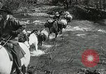 Image of Government workers plant trees Yacolt Washington USA, 1934, second 16 stock footage video 65675023133