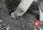 Image of Government workers plant trees Yacolt Washington USA, 1934, second 50 stock footage video 65675023133