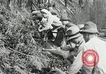 Image of Government workers plant trees Yacolt Washington USA, 1934, second 57 stock footage video 65675023133