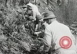 Image of Government workers plant trees Yacolt Washington USA, 1934, second 58 stock footage video 65675023133