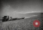 Image of Wheat or Allied Forces Walla Walla Washington USA, 1944, second 8 stock footage video 65675023160