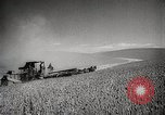 Image of Wheat or Allied Forces Walla Walla Washington USA, 1944, second 11 stock footage video 65675023160