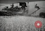 Image of Wheat or Allied Forces Walla Walla Washington USA, 1944, second 14 stock footage video 65675023160