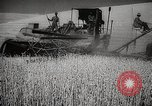 Image of Wheat or Allied Forces Walla Walla Washington USA, 1944, second 15 stock footage video 65675023160