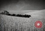Image of Wheat or Allied Forces Walla Walla Washington USA, 1944, second 17 stock footage video 65675023160