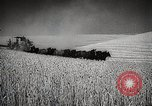 Image of Wheat or Allied Forces Walla Walla Washington USA, 1944, second 18 stock footage video 65675023160