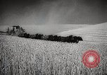 Image of Wheat or Allied Forces Walla Walla Washington USA, 1944, second 19 stock footage video 65675023160