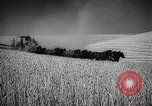 Image of Wheat or Allied Forces Walla Walla Washington USA, 1944, second 20 stock footage video 65675023160