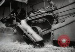 Image of Wheat or Allied Forces Walla Walla Washington USA, 1944, second 33 stock footage video 65675023160