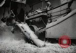 Image of Wheat or Allied Forces Walla Walla Washington USA, 1944, second 34 stock footage video 65675023160