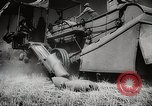 Image of Wheat or Allied Forces Walla Walla Washington USA, 1944, second 35 stock footage video 65675023160