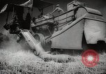 Image of Wheat or Allied Forces Walla Walla Washington USA, 1944, second 36 stock footage video 65675023160