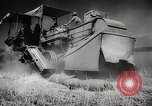 Image of Wheat or Allied Forces Walla Walla Washington USA, 1944, second 37 stock footage video 65675023160