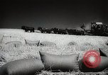 Image of Wheat or Allied Forces Walla Walla Washington USA, 1944, second 38 stock footage video 65675023160