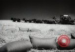 Image of Wheat or Allied Forces Walla Walla Washington USA, 1944, second 40 stock footage video 65675023160