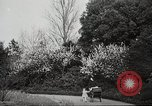 Image of Spring time London England United Kingdom, 1938, second 13 stock footage video 65675023175