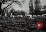 Image of Spring time London England United Kingdom, 1938, second 33 stock footage video 65675023175