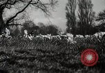 Image of Spring time London England United Kingdom, 1938, second 34 stock footage video 65675023175