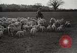 Image of Spring time London England United Kingdom, 1938, second 40 stock footage video 65675023175