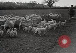 Image of Spring time London England United Kingdom, 1938, second 42 stock footage video 65675023175