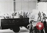 Image of Palestinian Arab Refugees Egypt, 1950, second 18 stock footage video 65675023180